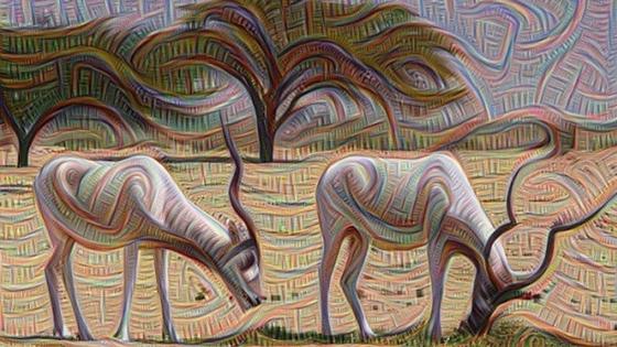 Neural Networks 2: Evaluation