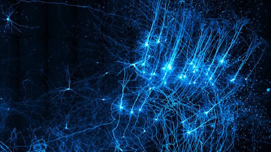 Hacker's guide to Neural Networks, #1