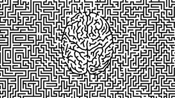 Learning in Brains and Machines (2): The Dogma of Sparsity