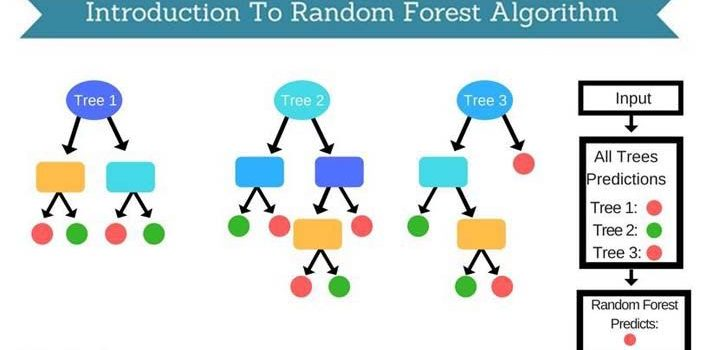 How Does the Random Forest Algorithm Work in Machine Learning