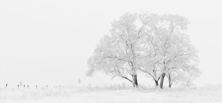 How an AI Winter Could Be Good for Data Science
