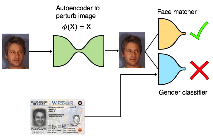 Generating Gender-Neutral Face Images With Semi