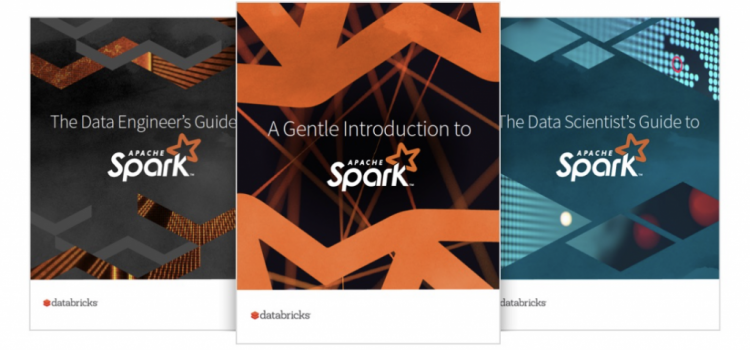 The Art of Data Science in Spark