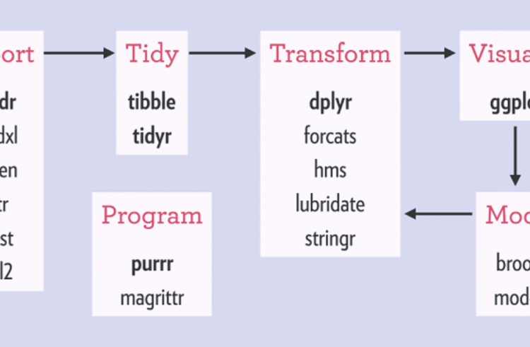 How Tidyverse Guides R Programmers Through Data Science Workflows