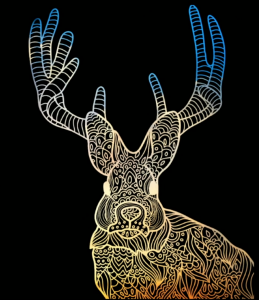 Data Scientists as Jackalopes