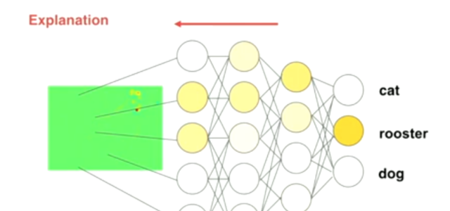 Layer-wise Relevance Propagation Means More Interpretable Deep Learning