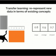 Effective Transfer Learning For NLP