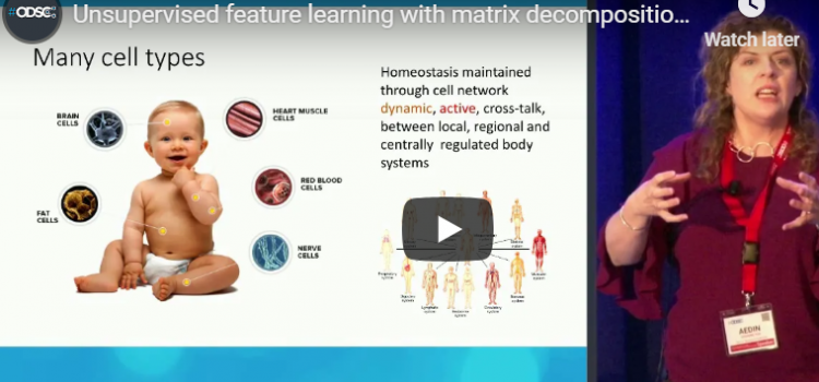 Watch: Unsupervised Feature Learning with Matrix Decomposition