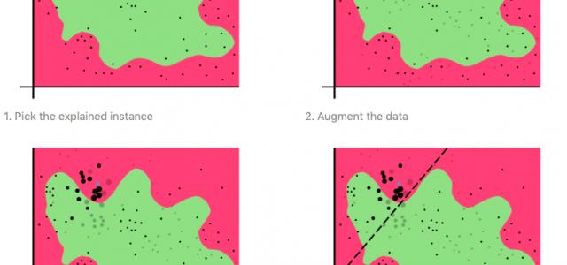 Cracking the Box: Interpreting Black Box Machine Learning Models