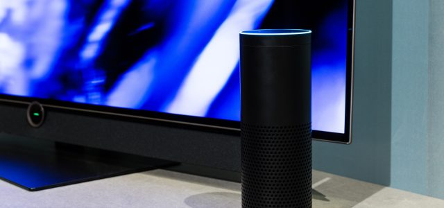 What Businesses Should Know About Speech Technologies