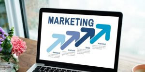 data scientists are marketing