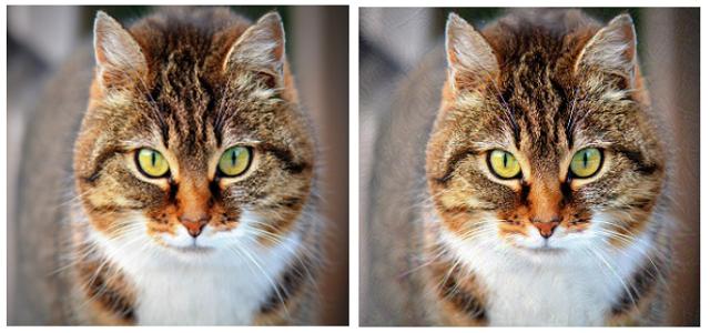 Adversarial Image Explanation Through Alibi