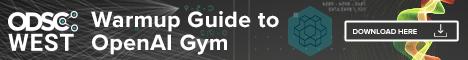 OpenAI Gym Mid